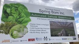 Green Automation - Baby Leaf CO sign